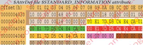 Hexadecimal editor representation of the $AttrDef file $STANDARD_INFORMATION Attribute. The brown shadowed part refers to the header, previously described.