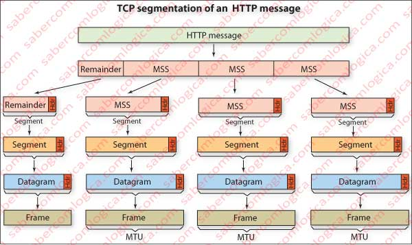 Schematic representation of TCP segmentation of an HTTP message.