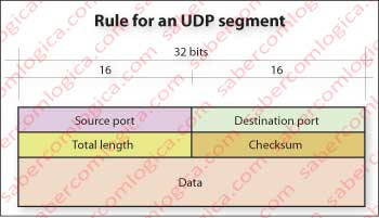 Far left column Rule for an UDP segment.